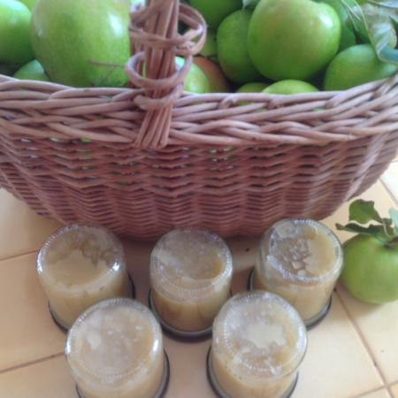 Compote pomme coing